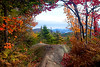 Autumn view from Bald Mountain