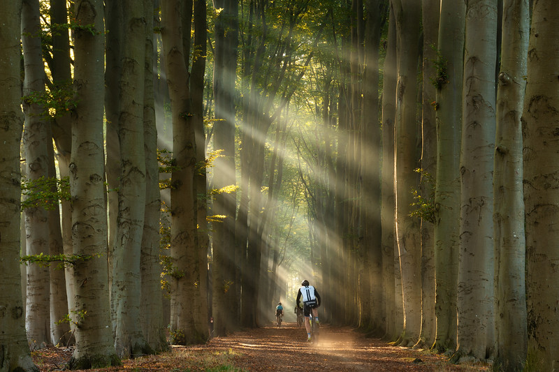 Cycling through paradise