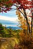 Fall Foliage from Bald Mountain