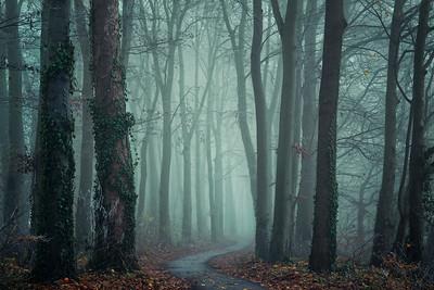 Same old path