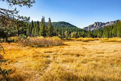 Autumn scenery of the Sierra Buttes from an open field in Bassets, CA