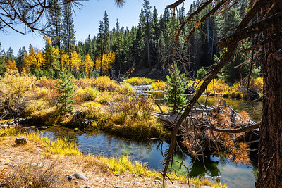 A mountain Autumn scenery along Cold Stream in Northern California.