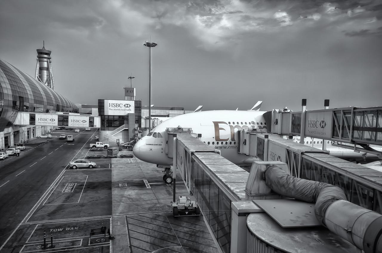 Pic(k) of the week 31: Dubai double-decker bus