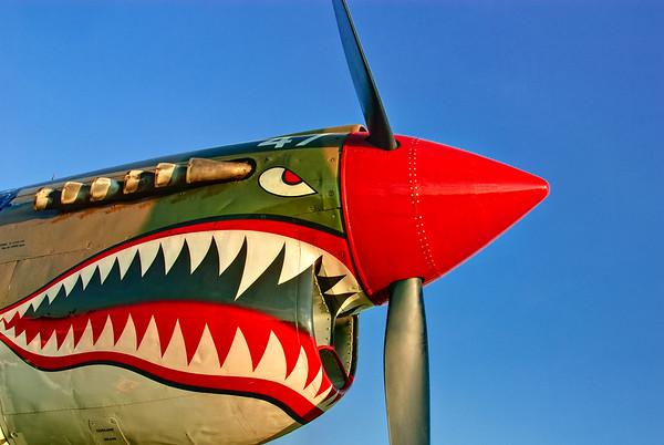 Curtiss P-40 Warhawk at Airventure 2008