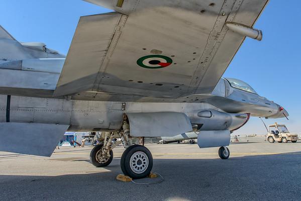 UAE F-16E, Desert Falcon