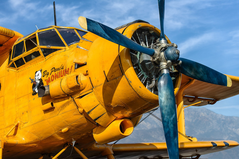 Antonov AN-2 nose section