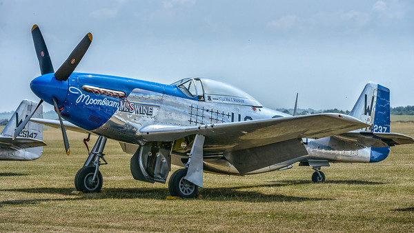 Moonbeam McSwine P-51 Mustang