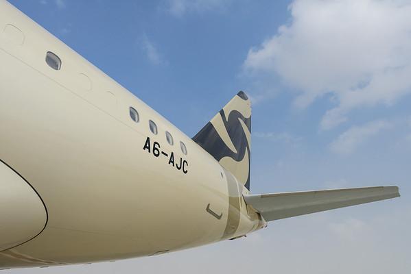 AJA Airbus A319 AJA