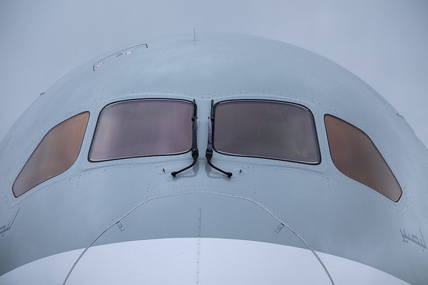 Qatar B787 nose section detail (front)