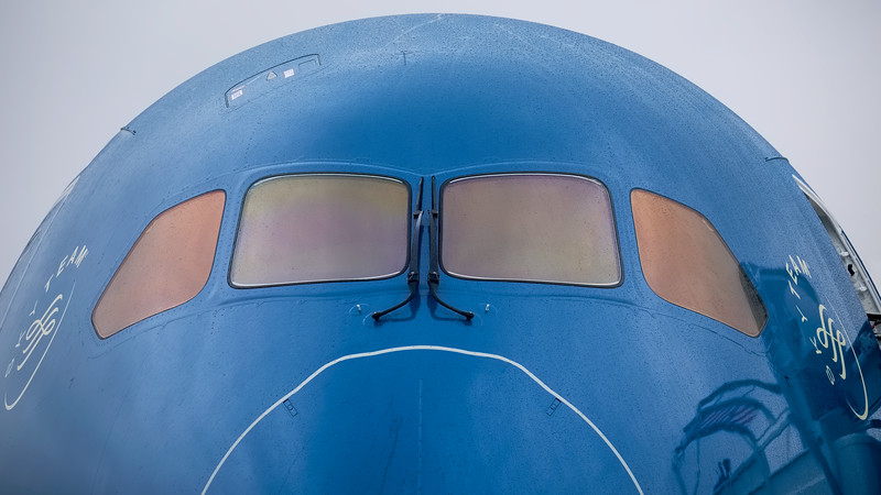 Vietnam B787-900 nose section