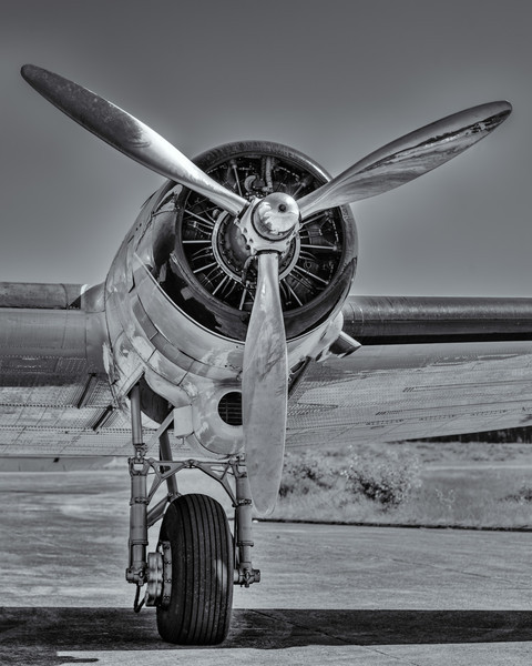 Breitling DC-3 engine   #1