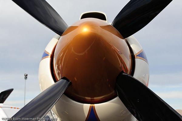 Sea Fury nose