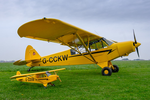 Piper Cub mother and baby