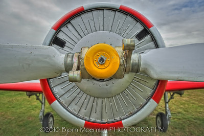 YAK52 nose in Little Grandson, UK