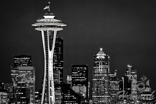 1st PLACE BLUE RIBBON, Washington County Fair Photography Exhibition 2013  Class: Black & White Lot:  Barns, bridges, buildings or other structures Description:  Skyline of the Space Needle in Seattle, Washington  © Copyright Hannah Pastrana Prieto