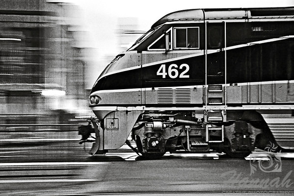 2nd PLACE RED RIBBON, Washington County Fair Photography Exhibition 2012  Class:   Black & White Lot:  Action Description:  A monochrome photo of a speeding Amtrak train shot in Downtown San Diego, California - using panning method.  © Copyright Hannah Pastrana Prieto