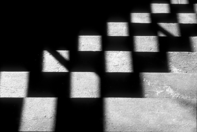 Shadow on Steps, Yorkville