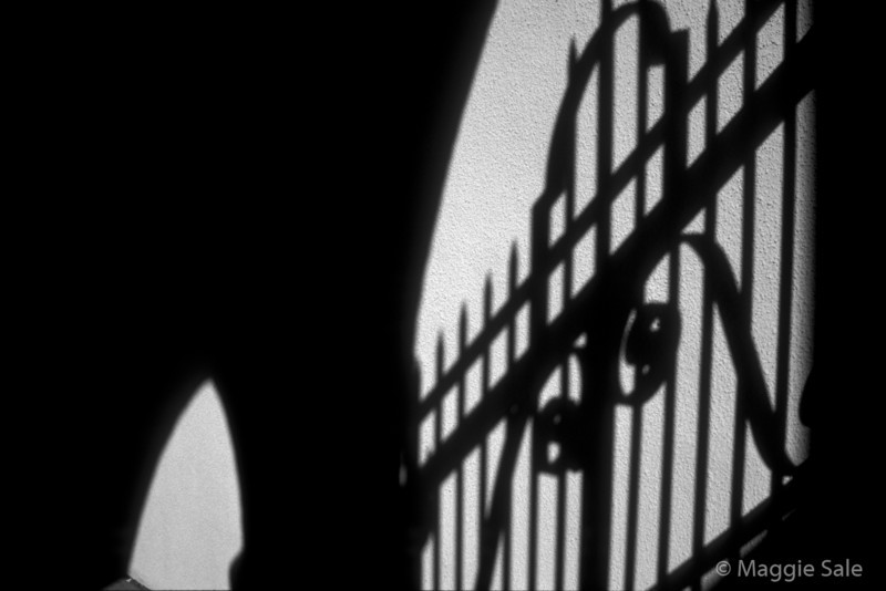 Gate Shadow, Sunnyside Pavillion