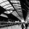 "Paddington Station London  <a href=""http://www.8dcphotography.co.uk"">http://www.8dcphotography.co.uk</a>"