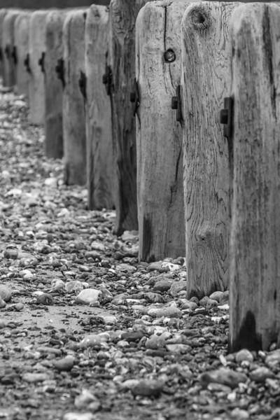 Coastal Columns