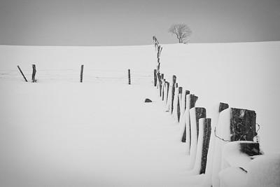 Three Fields |Springs, PA