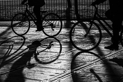 silhouettes and shadows
