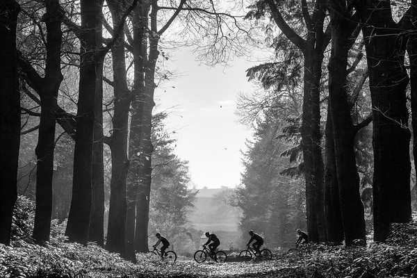 The mountainbikers