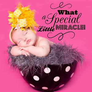 IMG_7610-miracle