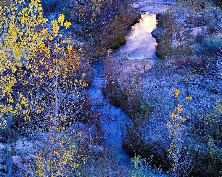 Calf Creek at First Light