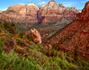 Zion Canyon, Early Morning