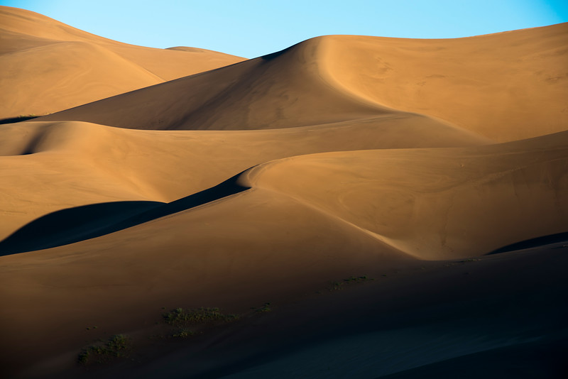 Windless Dunes
