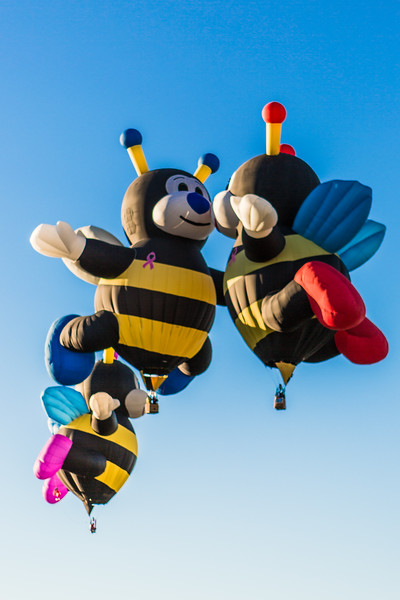Bumble Bees at Balloon Fiesta 2013