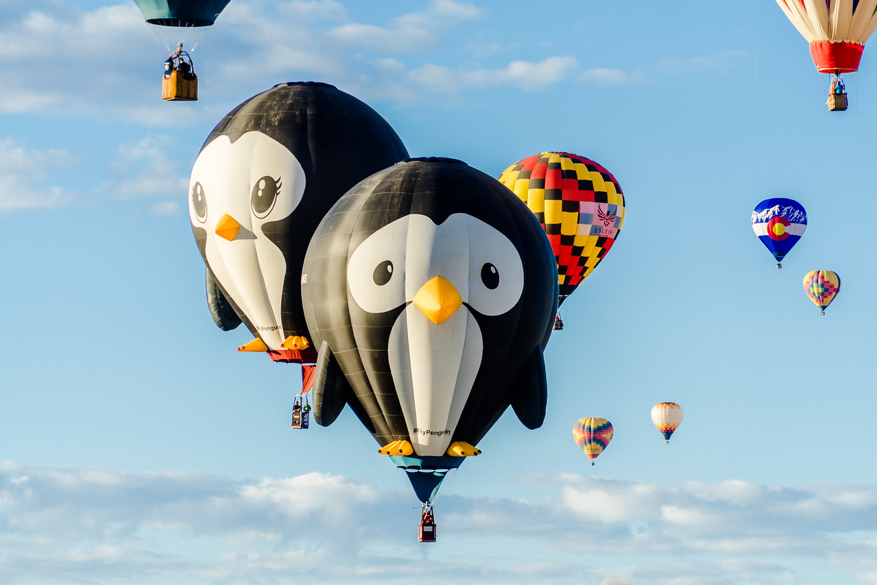 Two Penguins Flying at Balloon Fiesta 2016