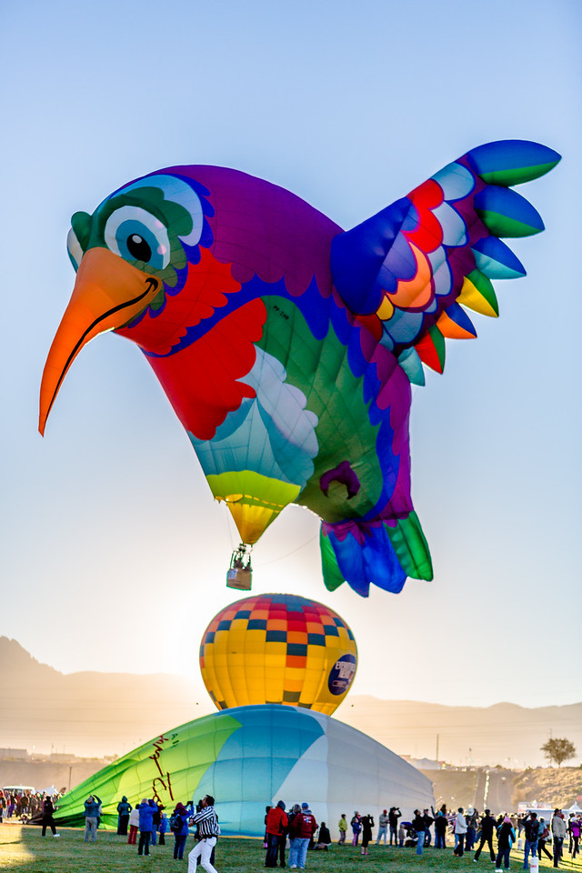 Humming Bird Special Shape Balloon Fiesta 2013