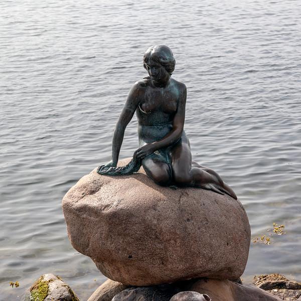 The Little Mermaid statue by Edvard Eriksen (1913)