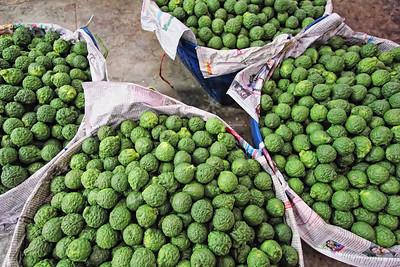 Kaffir Limes Bangkok copy