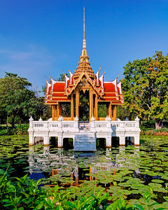 Lotus Pond, Royal Pavilion (1)