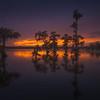 """Evening on the Bayou""    (2016)"