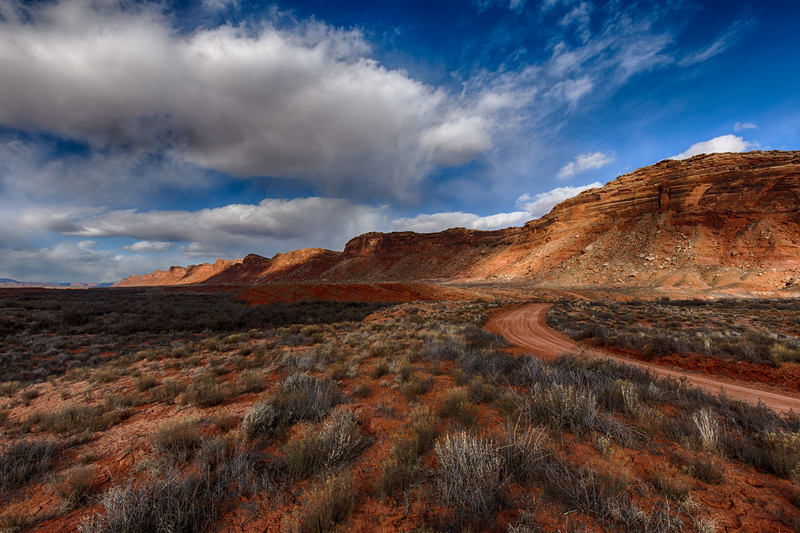 Comb Ridge, Bears Ears National Monument, Utah, USA