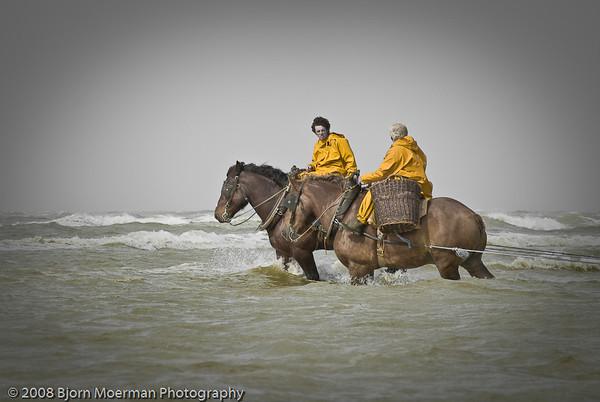 Garnaal vissers/Shrimp Fishers by Horse, Oostduinkerke, Belgium