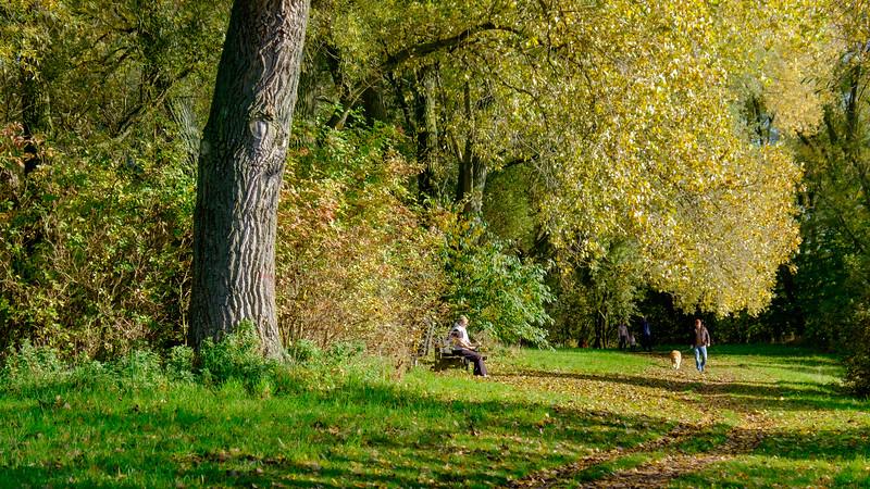 Autumn colours - Gaverdomein, Harelbeke, Belgium