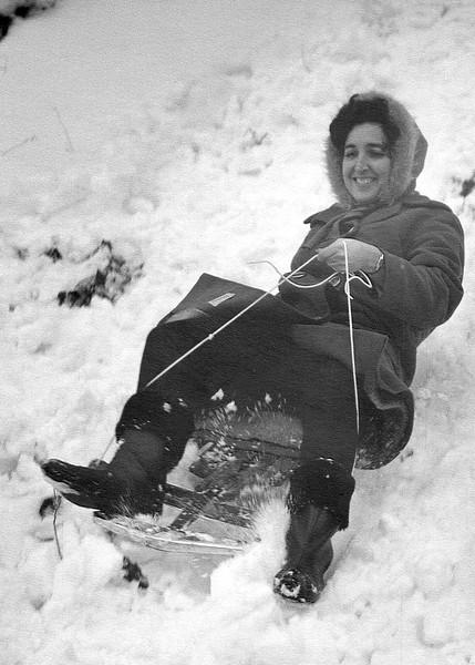 Alegria sledding