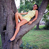 Florence reposing in a tree - Jamesport
