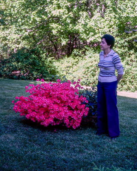 Alegria at Barry's parents in Mahwah - May 1981