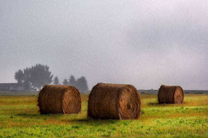 Fog Over Hay Bales, Alberta