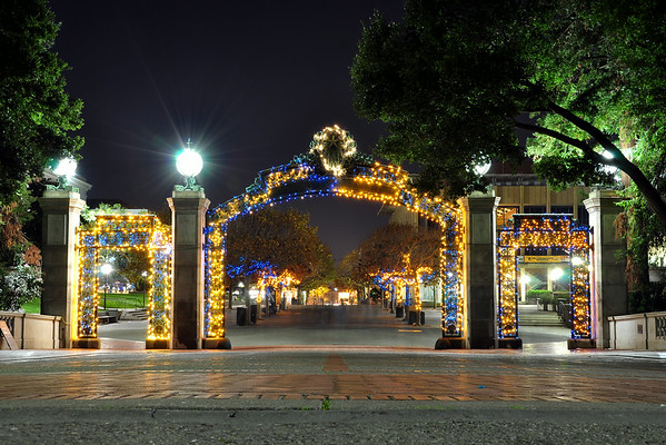 Blue & Gold Sather Gate