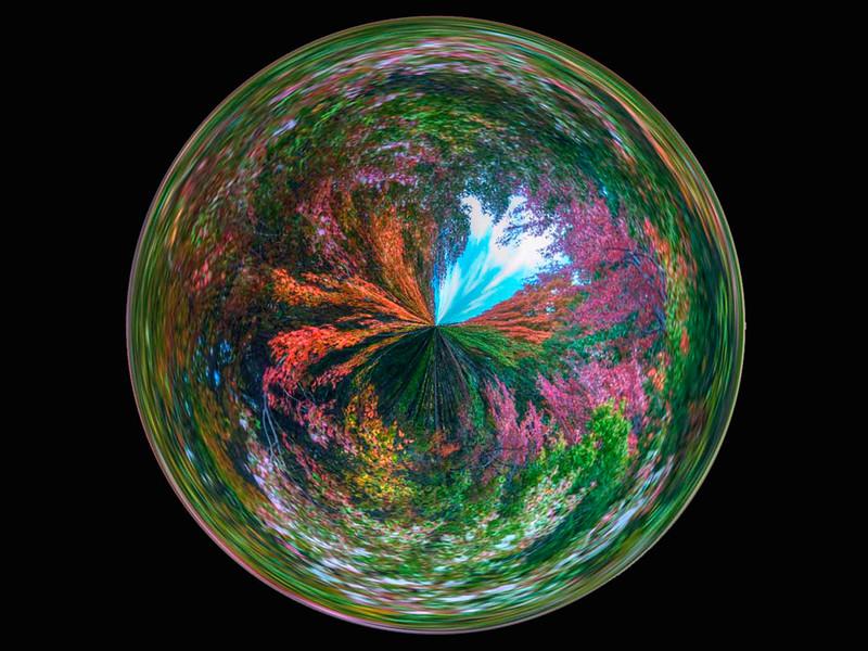 John Murphy - A World of Color