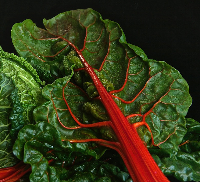 Red Silver Beet