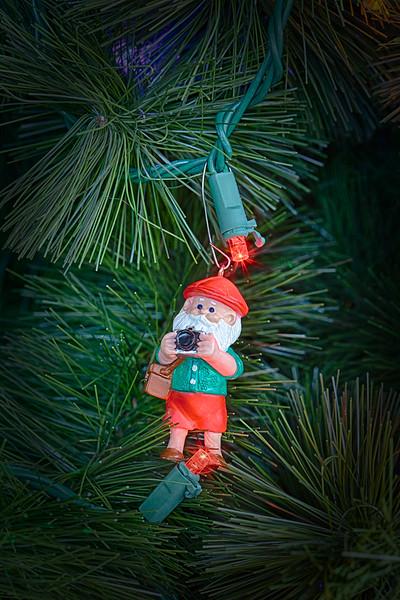 Snapshot Santa