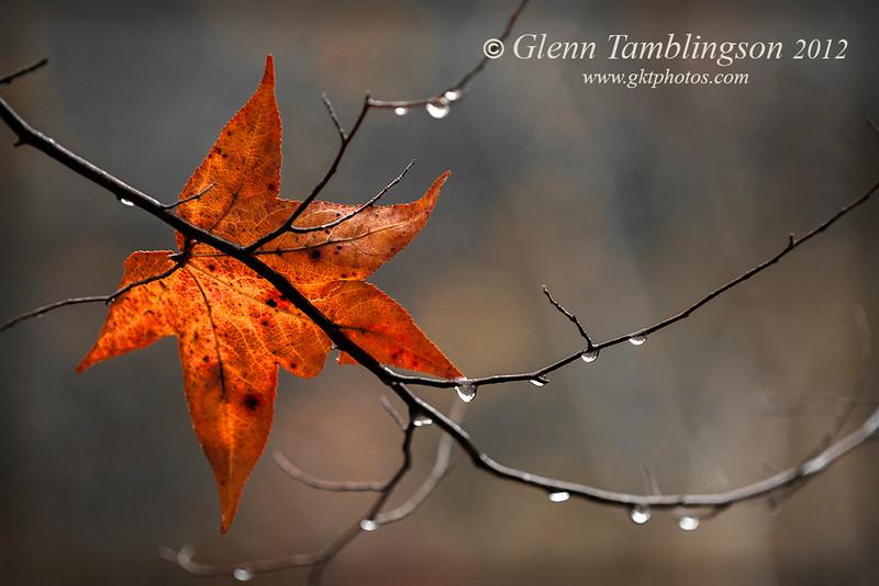 Glenn Tamblingson
